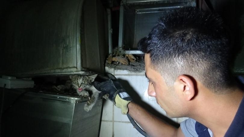 Havalandırma bacasından düşen kediyi itfaiye ekipleri kurtardı