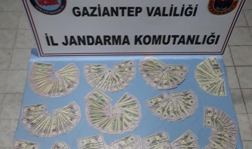 Gaziantep'te Sahte 74 bin 650 dolar Ele Geçirildi