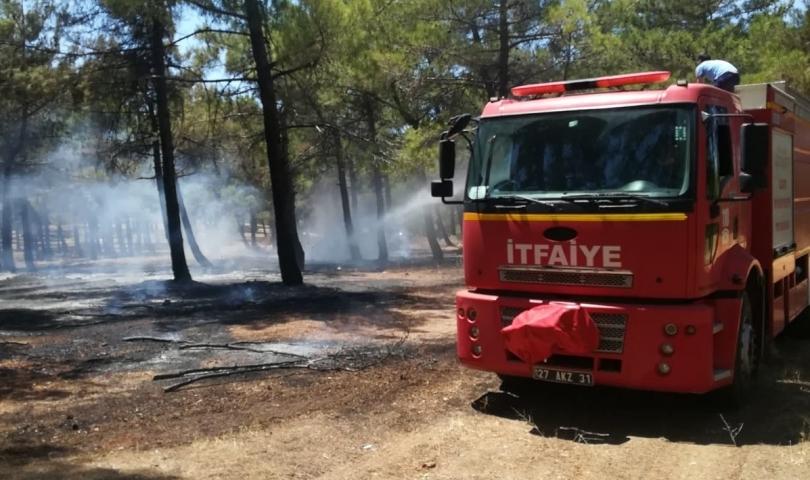 Burç ormanı'ndaki yangına erken müdahale