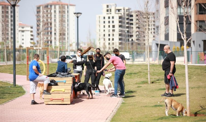 Hayvanseverlerin merakla beklediği 'Pet Park' hizmete açıldı